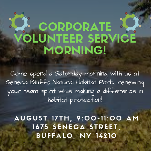 WNYSBR Corporate Volunteer Service Day Opportunity
